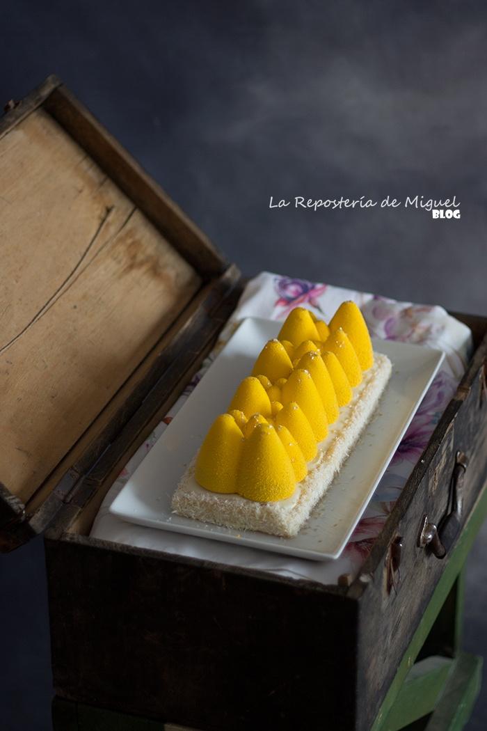 Cake-Mousse de Chocolate blanco,Coco y Limón y Frambuesa